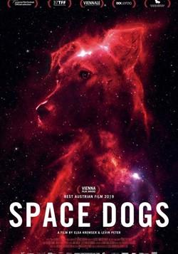 Фестиваль «Новое кино Австрии» 2020 - «Космические собаки»