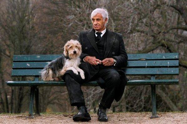 Фильмы с Жаном-Полем Бельмондо человек и его собака